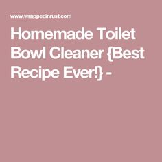 Homemade Toilet Bowl Cleaner {Best Recipe Ever!} -