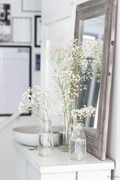 KUKKALA flowers / plants / garden / interior: Kesäjuhlakukkavinkki: harsokukka