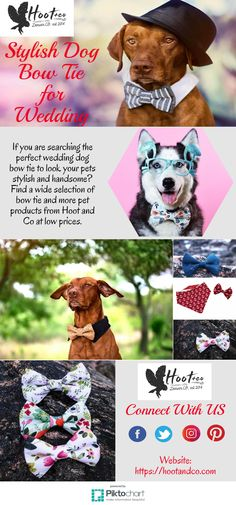 If you are searching the perfect wedding dog bow tie to look your pets stylish and handsome? Find a wide selection of bow tie and more pet products from Hoot and Co at low prices.