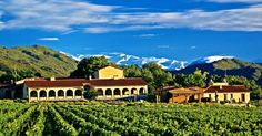 Colome winery and vineyard. Salta, Argentina.