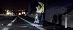 Travolto da auto sulla Salerno-Reggio Calabria, muore 42enne