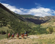 Horseback riding, overlooking the Continental Divide, Shoshone National Forest, Wyoming