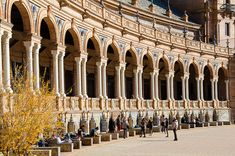 Alcoves, Tourist Map, Why Do People, Seville, Catholic, Cathedral, Castle, Europe, The Incredibles