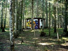 TVK in the woods | Flickr - Photo Sharing!