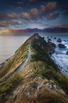 Nugget Point, New Zealand by Adam Phillips Follow @travelgurus for the best Tumblr Images