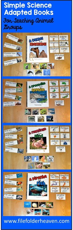 These Simple Science Adapted Books include 5 complete adapted books that teach students about animals groups and characteristics in a fun and interactive way. Adapted Books Included: A Camel is a Mammal A Crocodile is a Reptile A Frog is an Amphibian A Flamingo is a Bird A Piranha is a Fish Each book brings it's respective animal group to life with real photos. These adapted books focus on basic reading skills, animal group attributes, and identifying animals and characteristics in each gr