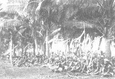 The Samoa Islands by Dr Augustin Kramer 1901 A village community.