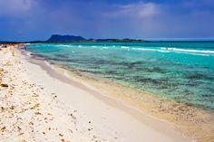 Spiaggia la cinta a san teodoro sardegna, ilViaggio.it immagini. Un luogo splendido per una vacanza indimenticabile, caraibi e divertimento in Sardegna in località San Teodoro..