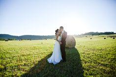 wheat field & love