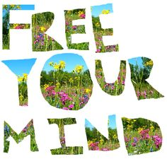 free your mind - what a great image and idea Pretty Words, Beautiful Words, Typography Love, Lettering, Yoga Quotes, Life Quotes, Practice What You Preach, Inspirational Articles, Kindness Quotes
