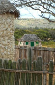 Bonaire Beautiful Islands, Shawls, Places Ive Been, Caribbean, Cruise, House Styles, World, Amazing, Outdoor Decor
