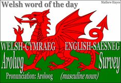 #Welsh word of the day: Arolwg/ #Survey