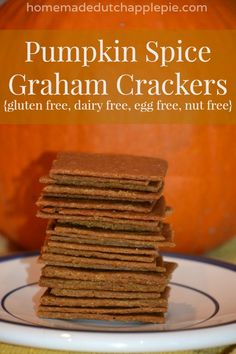 Pumpkin Spice Graham Crackers gluten free, dairy free, egg free, nut free | Homemade Dutch Apple Pie #glutenfree #recipes #gluten #healthy #recipe