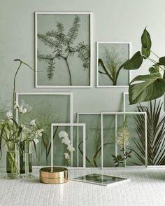 urban-jungle-interieur-planten-in-lijstjes