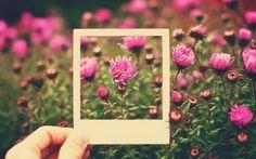 #ElJardinerodelBienestar #Mexican #Design  #Fashion #Intermoda #SS15 #Animmx #Beautiful #Flowers #Garden