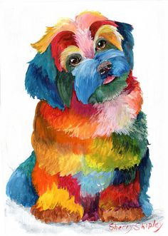Hava Puppy Havanese Painting by Sherry Shipley