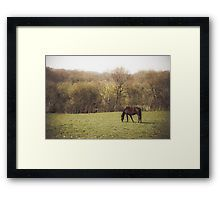 Framed Print Framed Prints, Horses, Artwork, Photography, Products, Work Of Art, Photograph, Photography Business, Horse