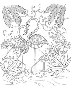 """Here's a selection from the 55 illustrations I made for the agenda semaines pour me donner des ailes"""" (mon […] Make your world more colorful with free printable coloring pages from italks. Our free coloring pages for adults and kids. Flamingo Coloring Page, Bird Coloring Pages, Mandala Coloring, Printable Coloring Pages, Free Coloring, Adult Coloring Pages, Coloring Sheets, Coloring Books, Coloring Pages For Grown Ups"""