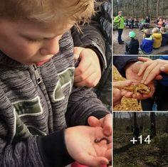 Basisschool de klim-op, Haaren - Binnen het project 'zorgen voor dieren' is de leeromgeving van kinderen vergroot, doordat de groepen 3 en 4 een vogeltjestocht hebben gelopen. De groepen 5 en 6 zijn op bezoek geweest bij een dierenasiel