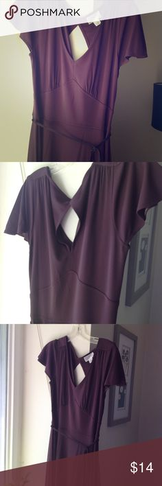 Ann Taylor Loft plum summer dress Very sweet!  Small cutout in back, see pic.  Braided tie sash around waist or tie in back. Side zipper. Capped sleeves.  Could wear to work or dress up for evening! Ann Taylor Dresses Midi