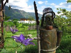 IMG_4918 South Tyrol, Arch, Outdoor Structures, Garden, Longbow, Garten, Lawn And Garden, Gardens, Wedding Arches