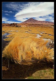 SOUTH LIPEZ - Bolivia