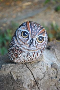 owl stone <3 look so real <3