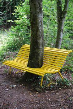 Le Vent des Forêts ( Meuse) 2011