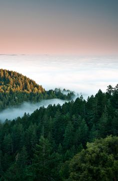 Mt. Tam and Foggy Sunset (by danielpivnick)