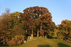 Oakwood Cemetery Oakwood Cemetery, Golf Courses, Country Roads