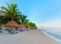 The beautiful beach at Sunscape Sabor Cozumel! Ideal for beach lovers!