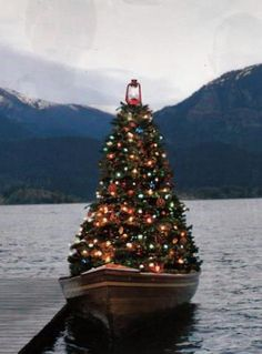 A Christmas Tree on a boat with a lantern as a star on top!