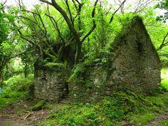 The Kerry Way walking path between Sneem and Kenmare in Ireland.