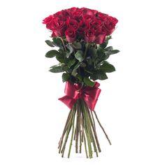 K narodeninám Ti prajem, ako to zvykom býva, aby sa Ti splnilo, čo Tvoje srdce skrýva. Plants, Amor, Plant, Planets