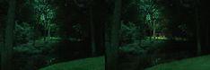 Specialty Landscape Lighting