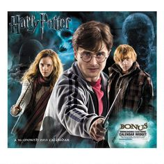 One of my favorite discoveries at HarryPotterShop.com: Harry Potter Magical Creatures 16 month 2013 Wall Calendar