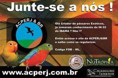 ACPERJ - Rio de Janeiro/RJ - www.acperjebr.com.br