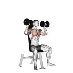 Gym Workout Tips, Dumbbell Workout, Workout Videos, At Home Workouts, Exercise Videos, Muscle Fitness, Fitness Tips, Shoulder Workout Routine, Dumbbell Shoulder Press