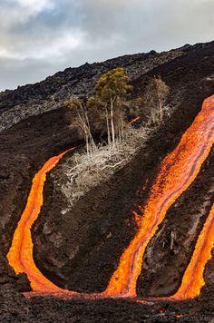 Kilauea, Hawaii - Field of Lava!