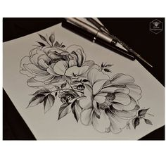 ✏✒#plants #peony #blackberries #flowers #darkartists #drawing #artgallery #sketch #linework #artwork ##blackart #paint #onlyblackart #tattooflash #tattoodesign #blackndark #tattoo2me