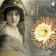 Evening Blossom - Girl with lace veil with large flower on writing.
