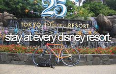 Stay at every Disney resort.
