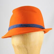 Image result for colour orange images