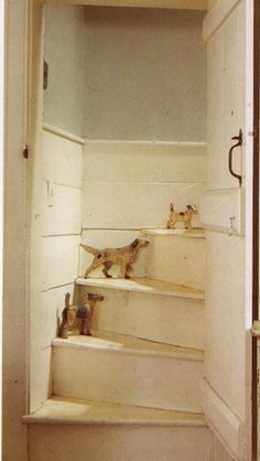 Collection of vintage dogs on an old staircase.