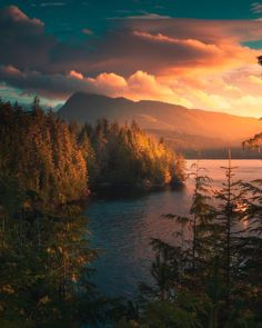A warm glow over Telegraph Cove 🧡. Located on the eastern coast of northern Vancouver Island, Telegraph Cove is best known for the… Beautiful World, Beautiful Places, Landscape Photography, Nature Photography, Camping Photography, Nature Aesthetic, All Nature, Vancouver Island, Canada Travel