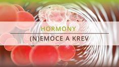Ukázka videokurzu Hormony, (n)emoce a krev s Barbarou Miller Vegetables, Food, Essen, Vegetable Recipes, Meals, Yemek, Veggies, Eten