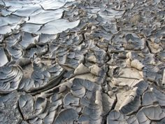 Drought stricken cracked earth.