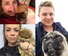 De dag van onze favoriete viervoeters: hondendag!  #hondendag #houseofrebels #houseofdogs French Bulldog, Dogs, Animals, Bulldog Frances, Animaux, French Bulldog Shedding, Doggies, Animal, Animales