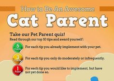 Are you a cat owner or have you ever considered owning a cat? This infographic will provide you with all the information you need to be an awesome cat parent!