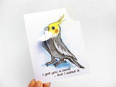Cockatiel Card Custom Card Funny Greeting Card by rainbowofcrazy, $4.35